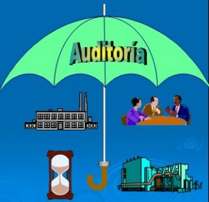 Auditor 1